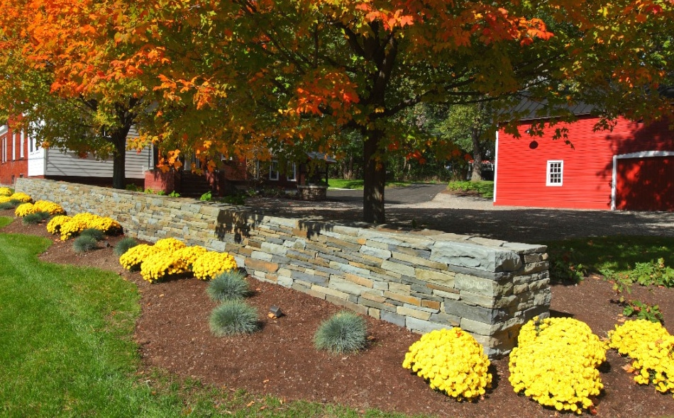 Latham Commercial Landscaping Project