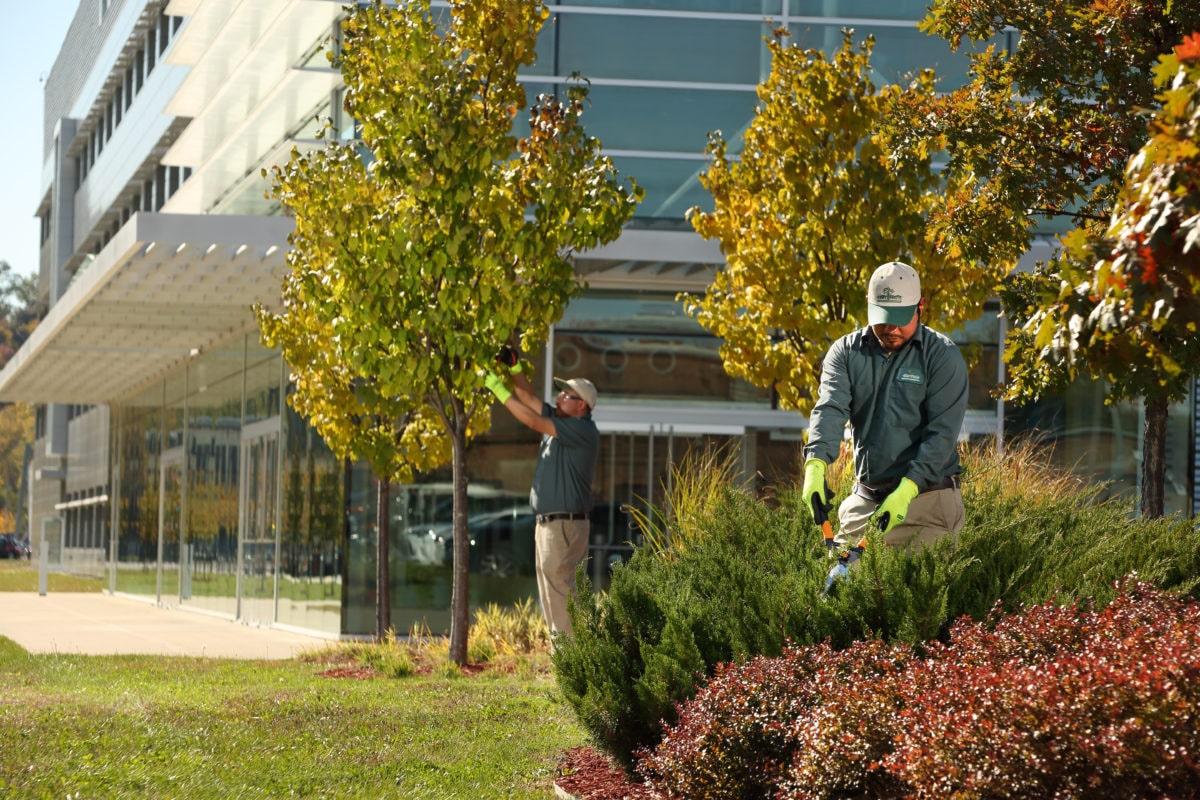 Featured Image For Seasonal Maintenance Program